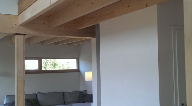 "<p style=""text-align: center;""><strong>Fertigstellung EFH in Holzrahmenbau:</strong></p> <p style=""text-align: center;""></p>"